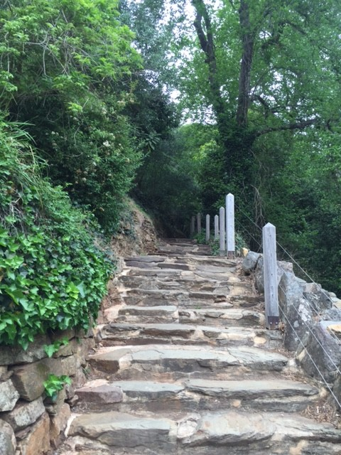Stairs up Mount Lofty
